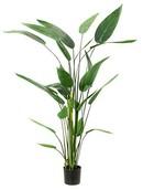 Kunstplant Heleconia  (26 bladeren)