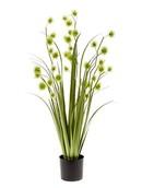 Kunstplant Grass pompom Green  lt
