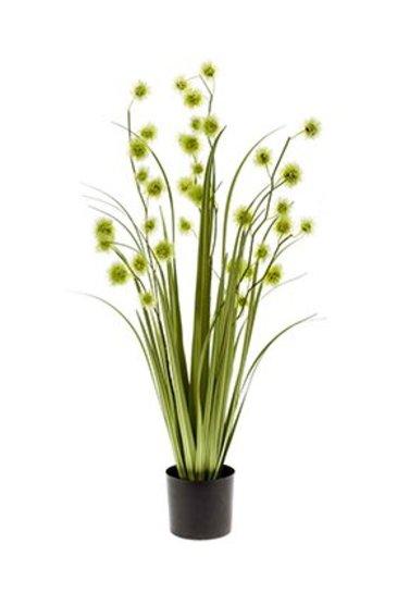 Kunstplant Grass pompom Green  lt - Zijdeplant