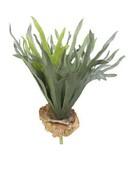 Kunstplant Staghorn fern (19 bladeren)