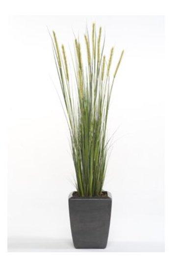 Kunstplant Foxtail grass Groen  - Zijdeplant
