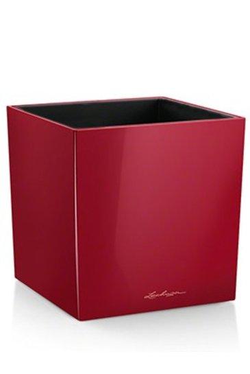 Lechuza Cube Rood (Kunststof plantenbak)