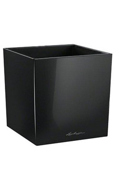 Lechuza Cube Zwart