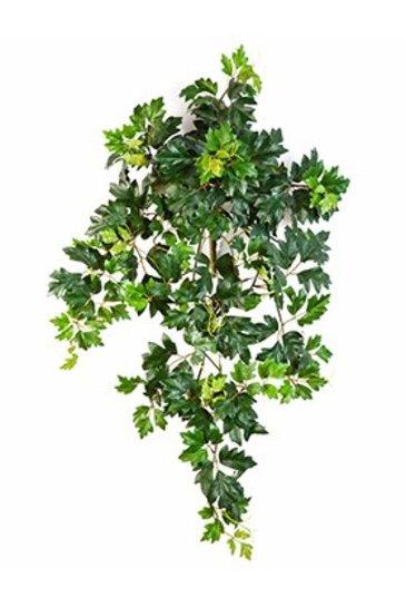 Kunstplant Cissus ellen danica (grape ivy) Hanger