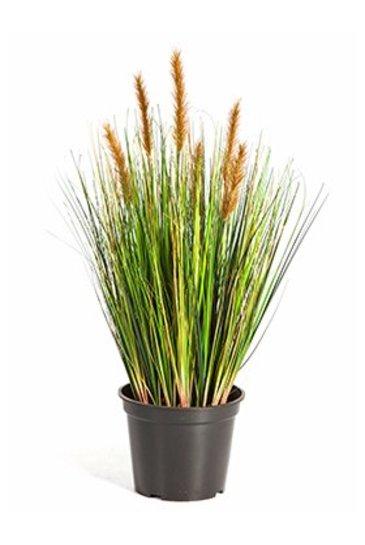 Kunstplant Grass foxtail Brown