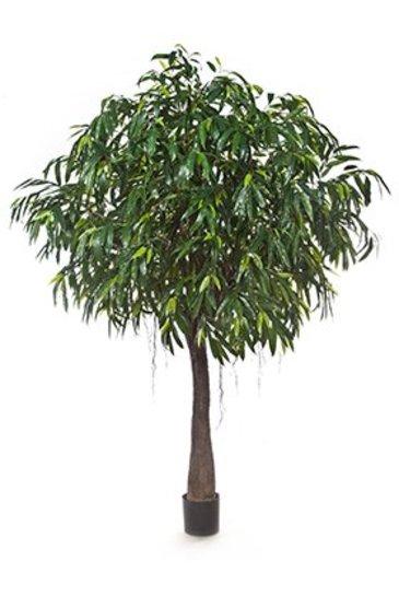Kunstplant Longifolia royal cabana