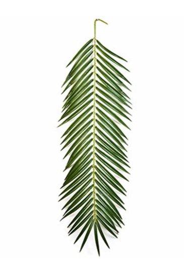 Kunstplant Phoenix palm spray