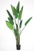 Kunstplant Strelitzia  (13 bladeren)