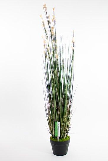 Kunstplant Grass coral - (Zijdeplant)