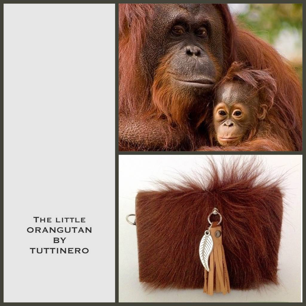 The Little Orangutan