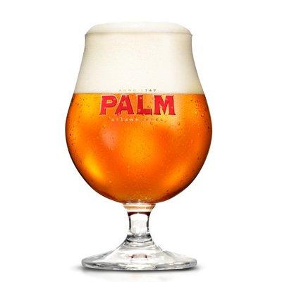 Palm Bokaal Groot
