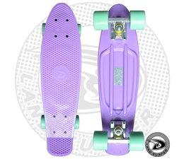 """Land Surfer fish skateboard """"pastel"""" met mintgroene wielen"""