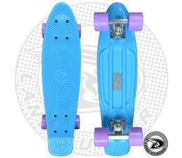 Land Surfer skateboard pastel blue with pastel purple wheels