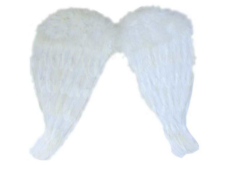 Witte Vleugels 52x48 cm