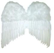 Ailes Blanc 50x42 cm