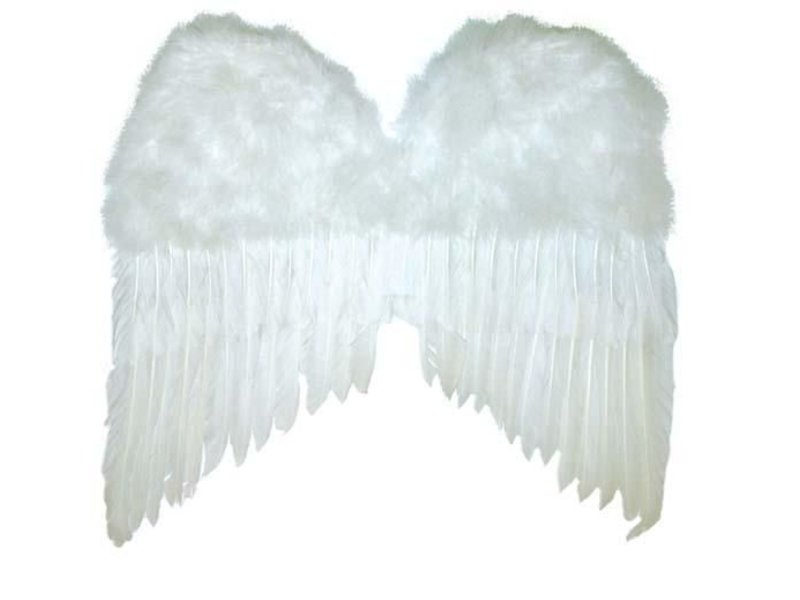 White Wings 50x42 cm