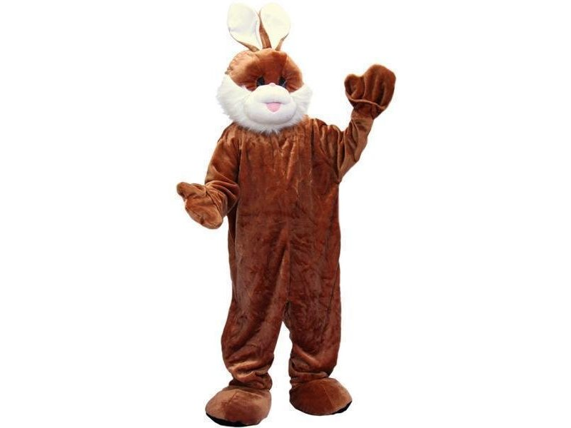 Costume Peluche Lapin Big