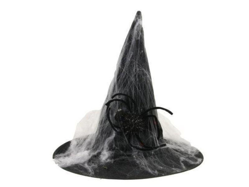 Witch Hat spiderweb