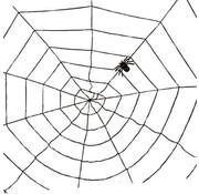SpiderWeb black 1,5m