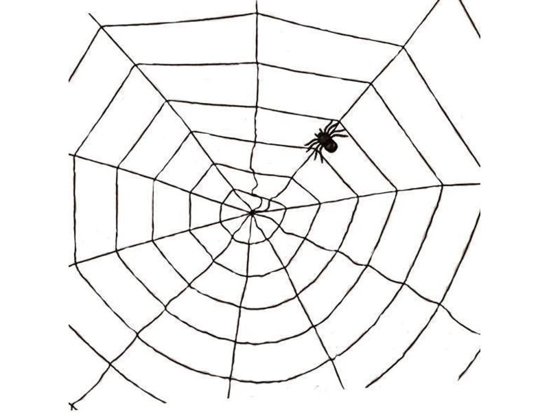 Spinneweb zwart 1,5m