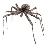 Spider Grey 90cm