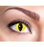 Breaklight Lentilles Fashion -  Yellow Cat