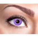 Purple Gothic 3 mois lentilles