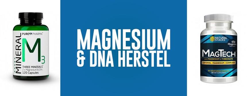 Magnesium voor herstel van DNA