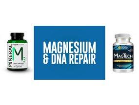Magnesium for DNA repair