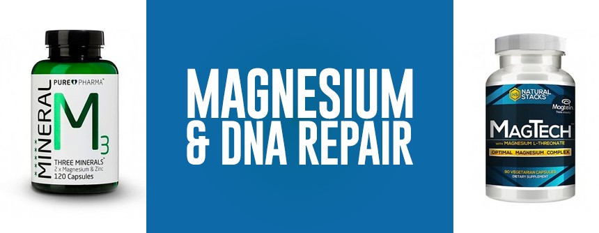 Magnesium for DNA repair