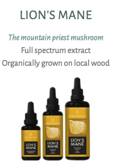 The Mushroomist LION'S MANE Extract 30ML