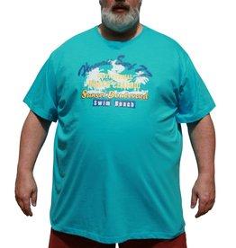 DAGIO 11701 T-shirt grandes tailles blue