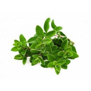 Aromatherapie - Slaaphulp (Marjolein geur)