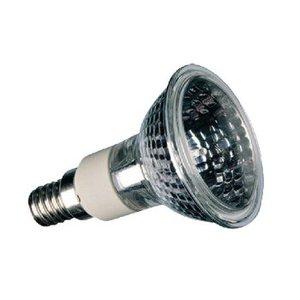 Sylvania Halogeenlamp E14 Reflector 40 W 265 lm 2700 K