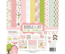 Echo Park Bundle Of Joy 2 Girl 12x12 Inch Collection Kit (BJGT79016)