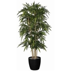 Bamboe de luxe