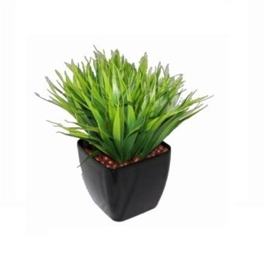 Bamboe tafel plant H30cm