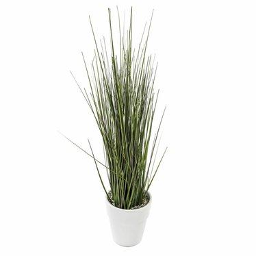 Groendecoratie in witte pot H55cm