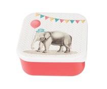Broodtrommeltje Party Elephant