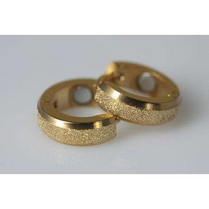 2012G Magnetschmuck Ohrring Gold