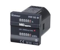 Kübler Double Function Counter HW66