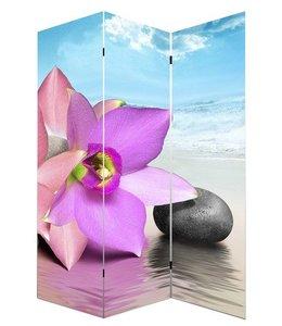 Kamerscherm Orchidee, Steen en Zee