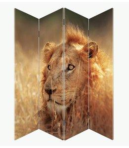 Kamerscherm Leeuw