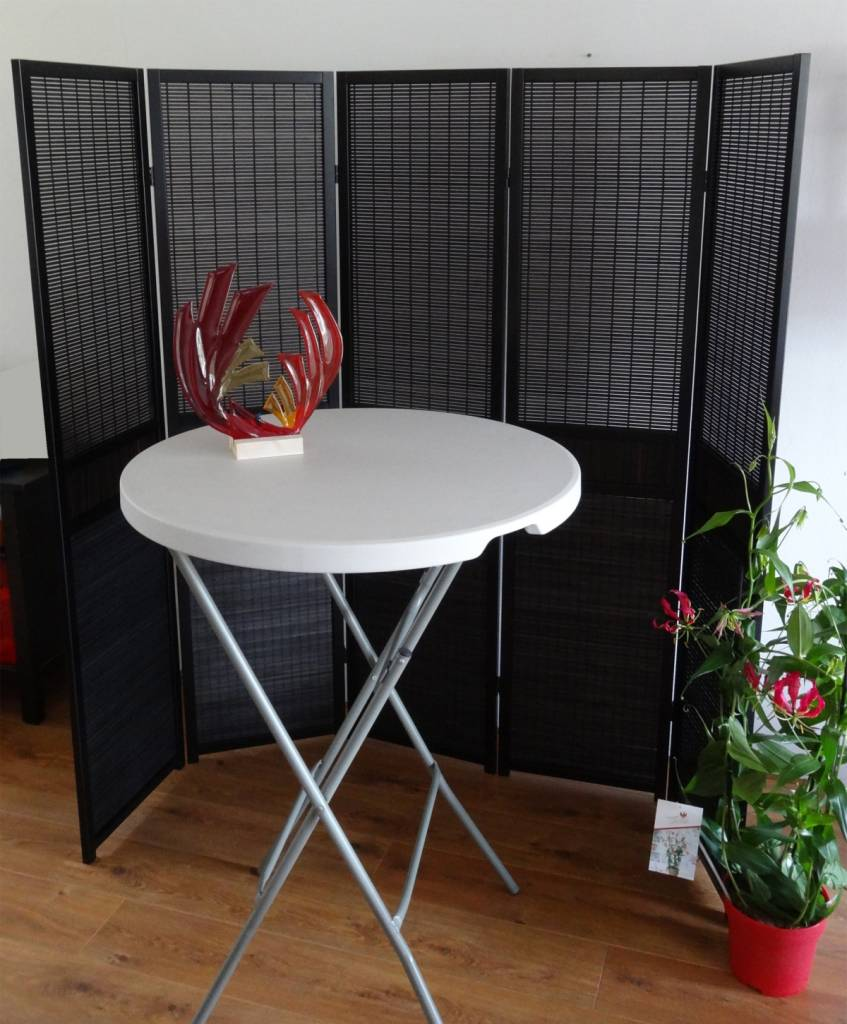 10 manieren om een kamerscherm te gebruiken   canvasscherm.nl