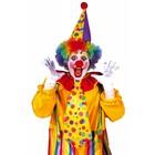 Clowns accessoires
