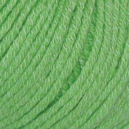 Belle Organic DK col. 019 Cut Grass