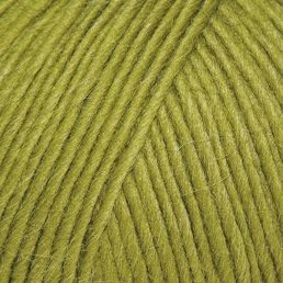 Creative Focus Worsted Fb. 01265 New Fern