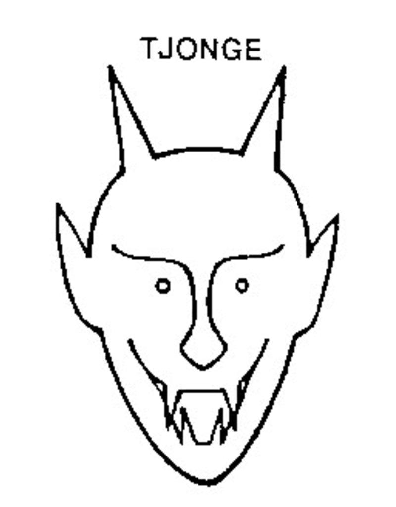Tjonge-2 - eigenaardig periodiek met volstrekt onvoorspelbare verschijningsfrequentie