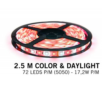 RGBW LED strip color + daylight- 2,5 M - 72 LED's P/M - 12V