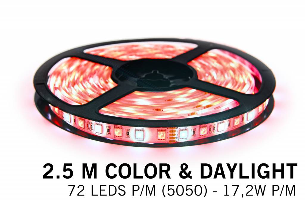RGBW LED strip color + daylight- 2,5 M - 72 LED's P/M - 12V